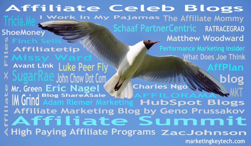 Affiliate Marketing Blogs