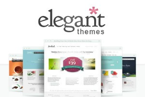 Blogging resources elegant themes